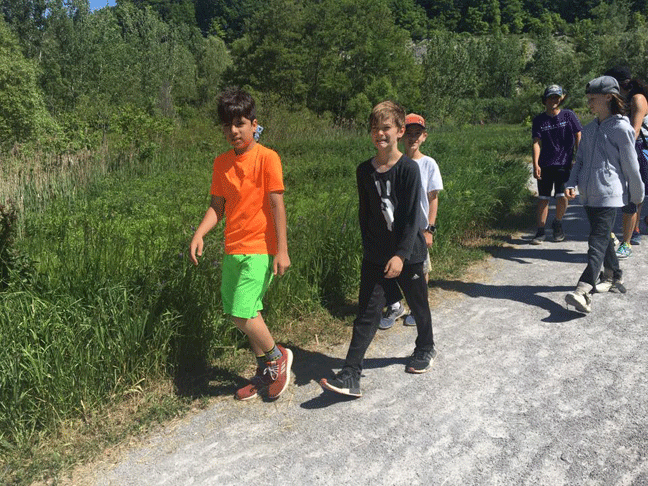 Taddle Creek students walking